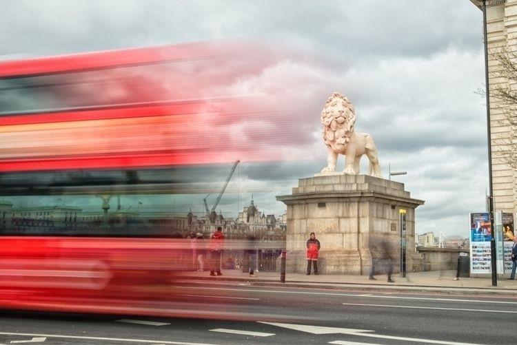 Westminster Sentry - lion, london - jgimaging | ello