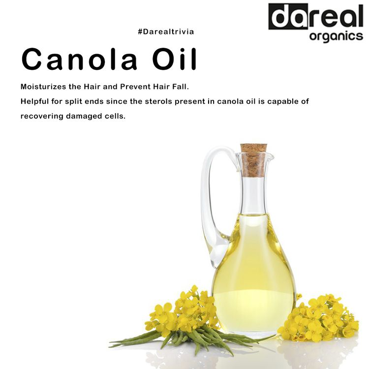 magic Canola - darealorganics, natural - darealorganics | ello