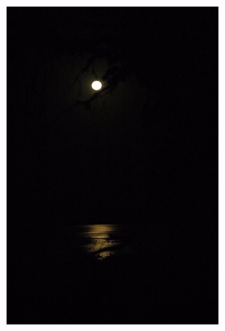 Moonlight - abstract, abstractart - jsuassuna   ello