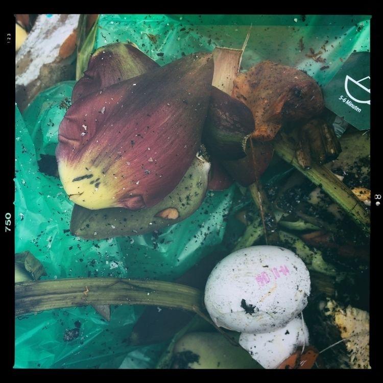 Lacrimosa - photography, garbage - marcushammerschmitt   ello
