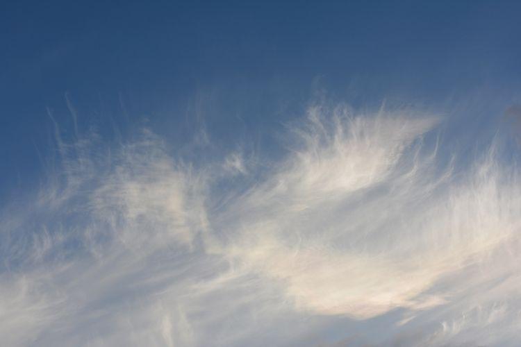 Cirrus Clouds Madeira - euric | ello