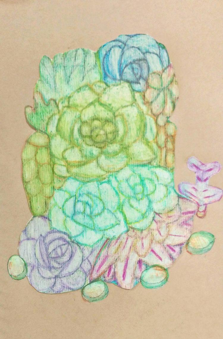 succulent, cute, succulentplant - purecha8m | ello