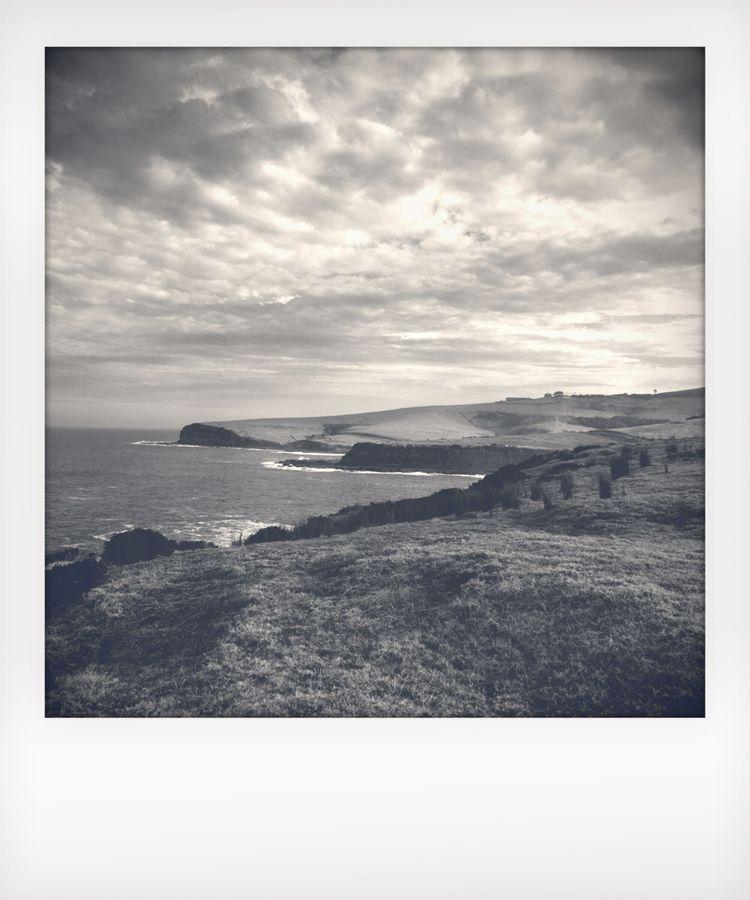 Polaroid Series :copyright:Jenn - jenny_papalexandris | ello
