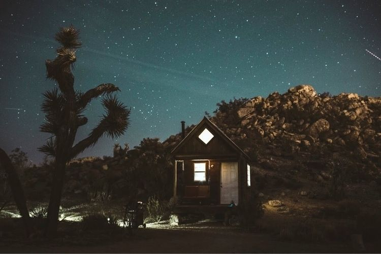 stars, joshuatree, longexposure - rrosemarie | ello