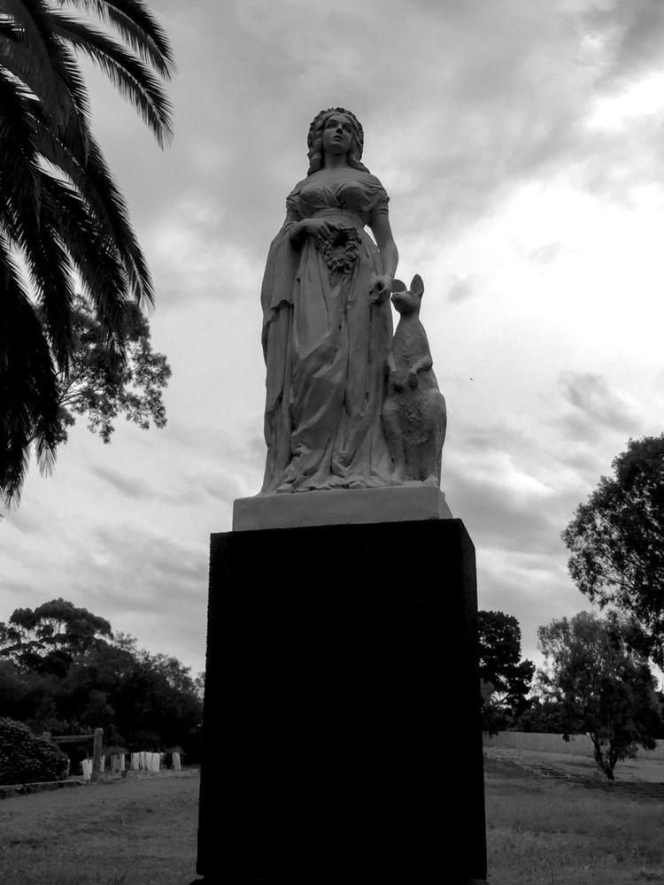 Lady white kangaroo - Maribyrnong - sacrecour | ello
