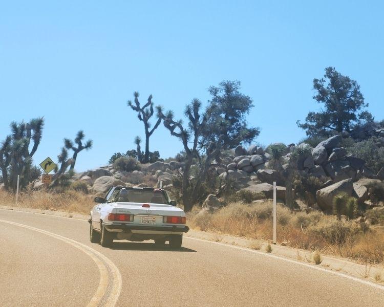 Rag Top - desert, joshuatree, jtree - aaronmart | ello