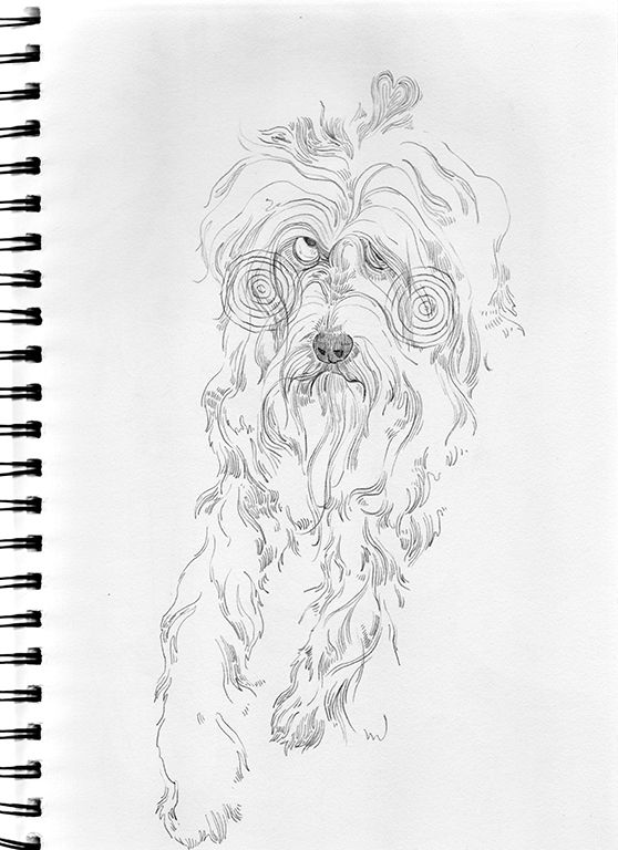 art, illustration, drawing, dog - linsshit | ello