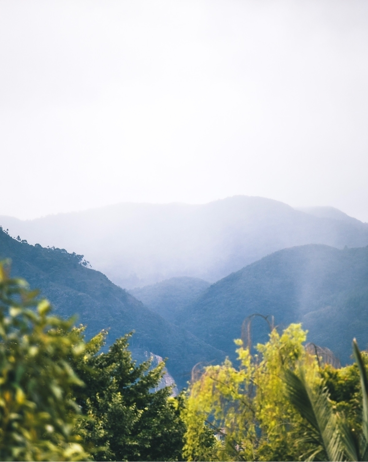 Bogota, Colombia - behindthelens - fraudfix | ello