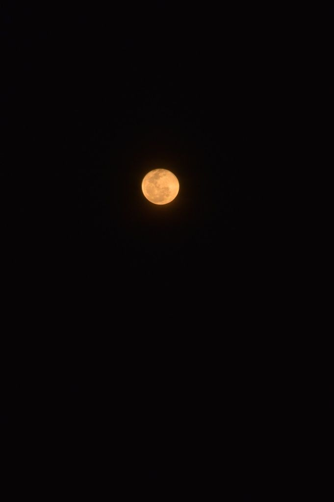 Orange moon - photography, ellophotography - luisavidalesreina | ello