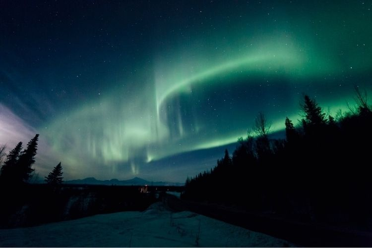 Aurora season coming gain dayli - bradcarter | ello