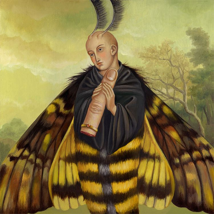 'Sir Noctuidae' Juliana Kolesov - wowxwow | ello