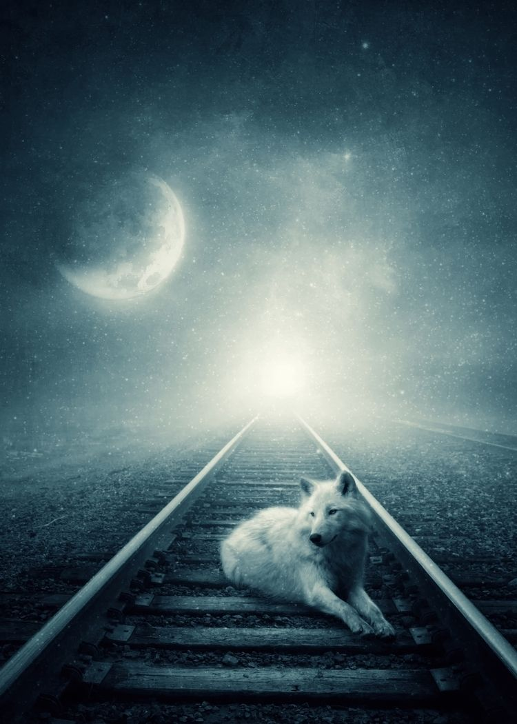 Moon Stories Albulena Panduri S - albulena | ello