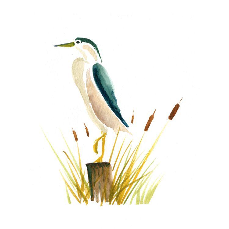 Watercolor sketch Natural Scien - juanjogasp | ello