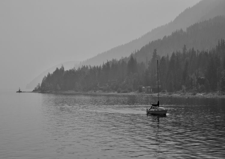 Smoke water bad year forest fir - camwmclean | ello