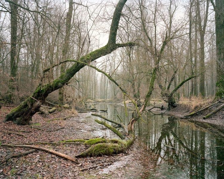 series 295 Kilometers Isar rive - themartinf   ello