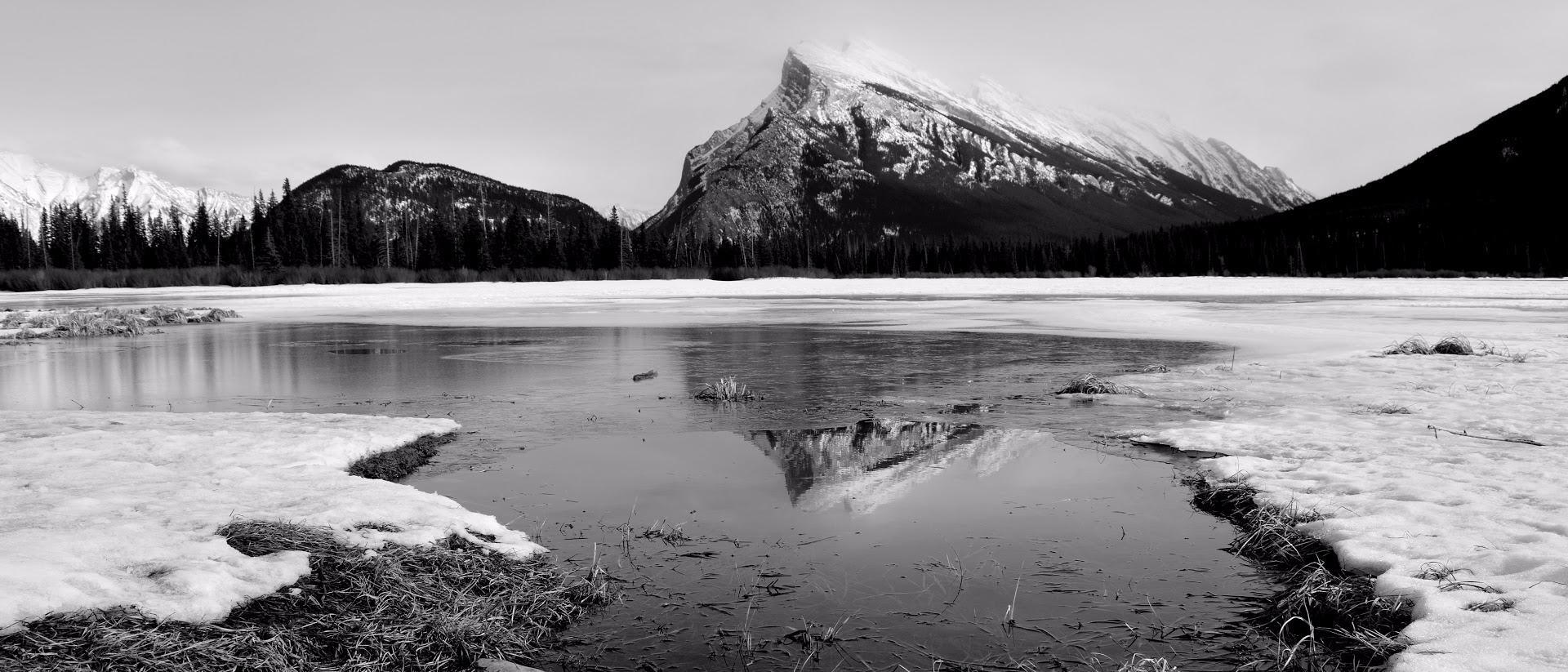 Reflections warm days melt ice  - camwmclean | ello