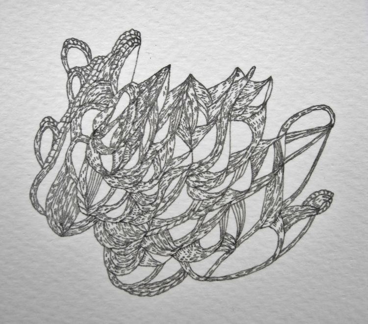 Shuttle Rotring drawing paper  - uleedee | ello