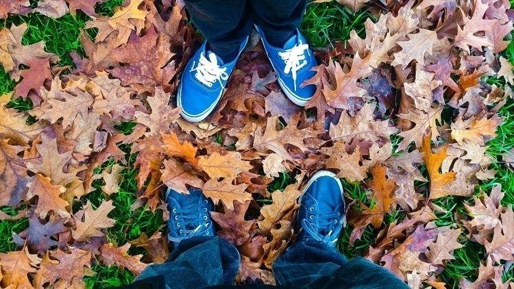 Life Autumn - 19nan85 | ello
