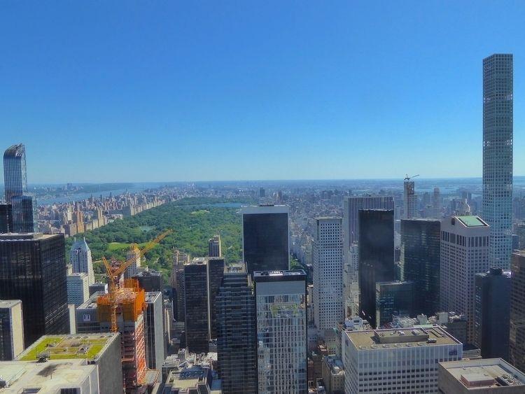 Central Park – bird | NYC 2017  - thomgollas | ello