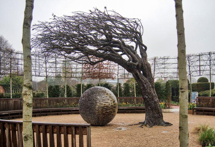 Eye - tree gardens Place . scul - neilhoward | ello