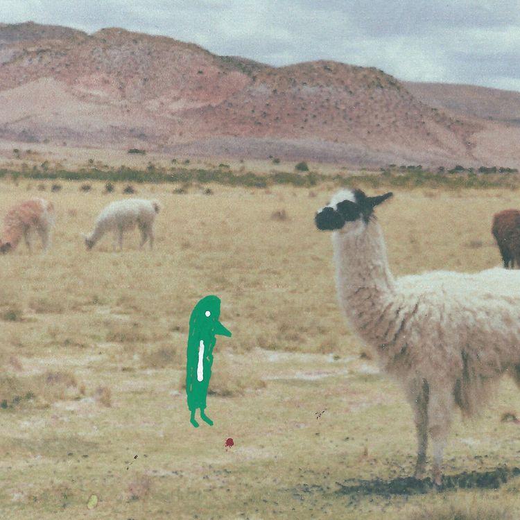 """Hang grumbled Reala Alpaca. du - littlefears   ello"