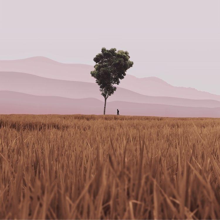 landscapes feel dreams - photography - andhikaramadhian | ello