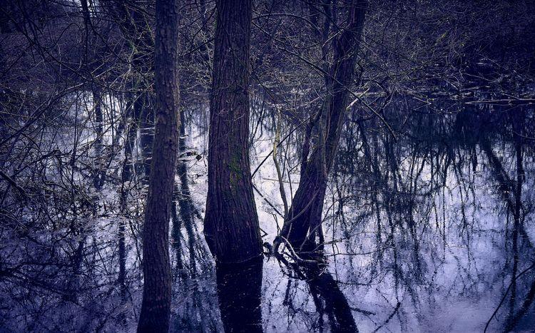 Moody Waters - nature, naturephotography - klausheeskens | ello