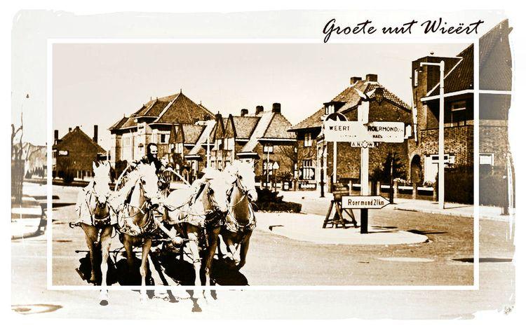 Netherlands Weertbijzonder Page - drakre52 | ello