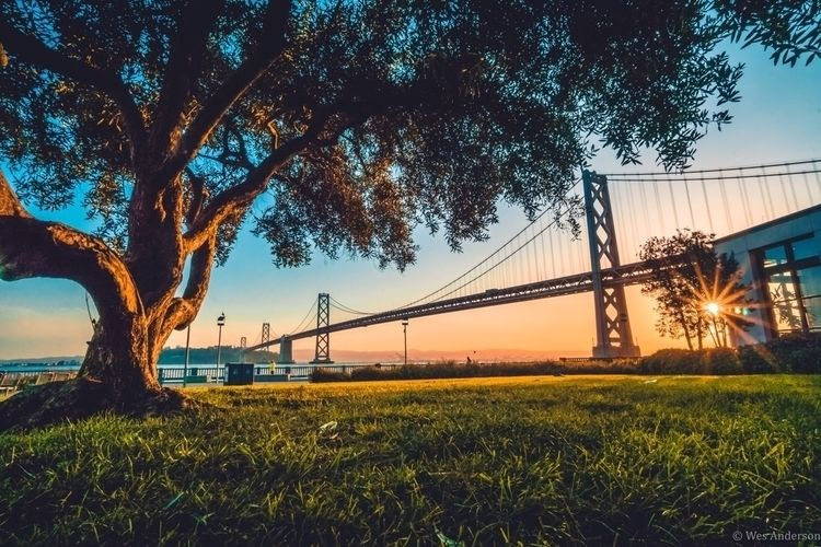 Rincon Park — SF, CA - wesandersonphotography | ello
