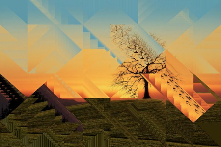 tree - nature, landscape, trees - jazer | ello