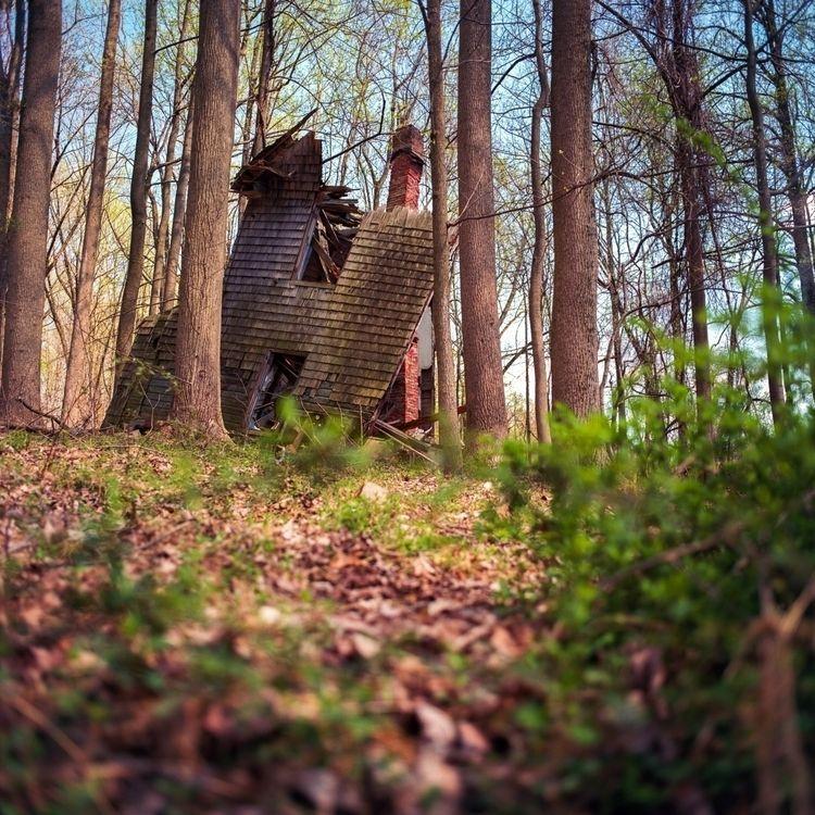 Woods Mamiya C330 Kodak Ektar 1 - danielregner | ello