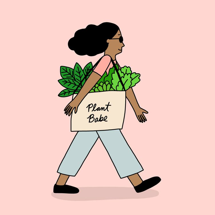 Plant Babe Day 24 daily drawing - ashleighgreen | ello