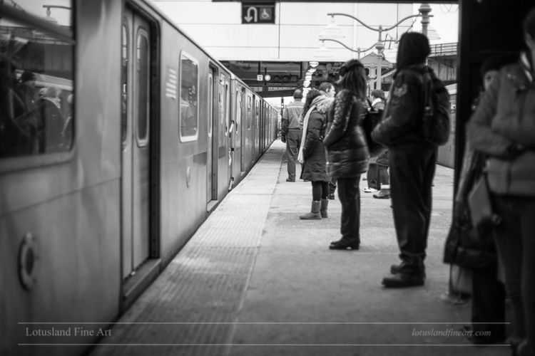 People-watching subway regular  - wlotus | ello