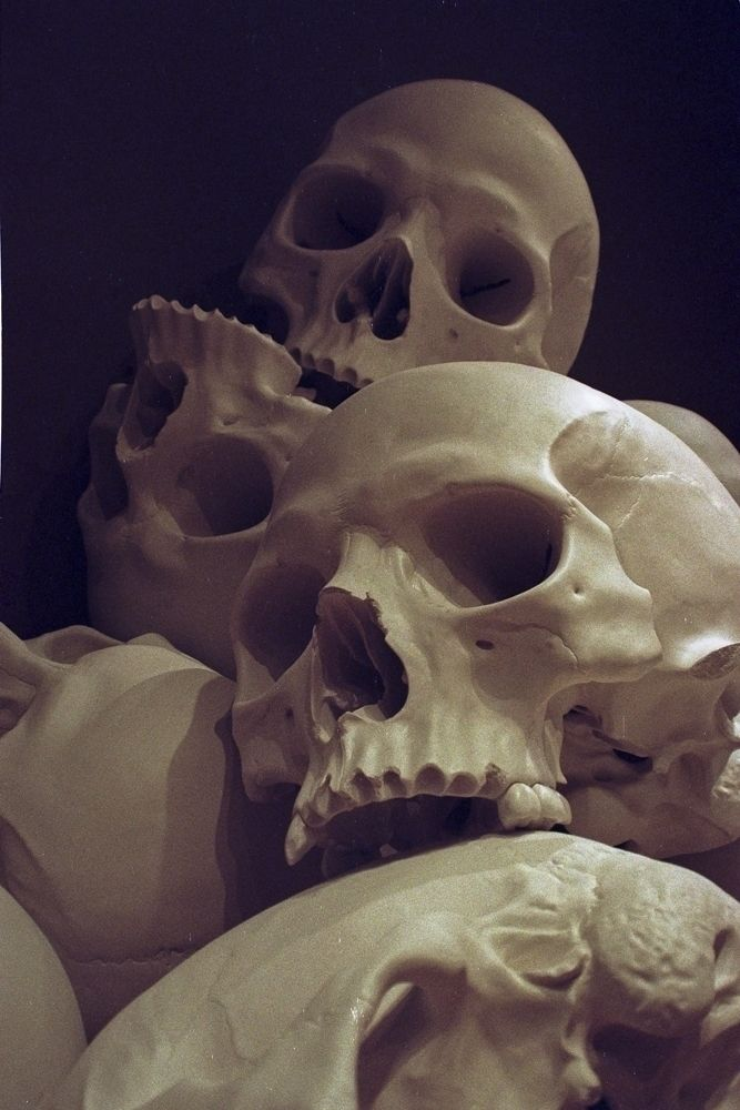 Ron huge skulls, NGV. Australia - matthewschiavello | ello