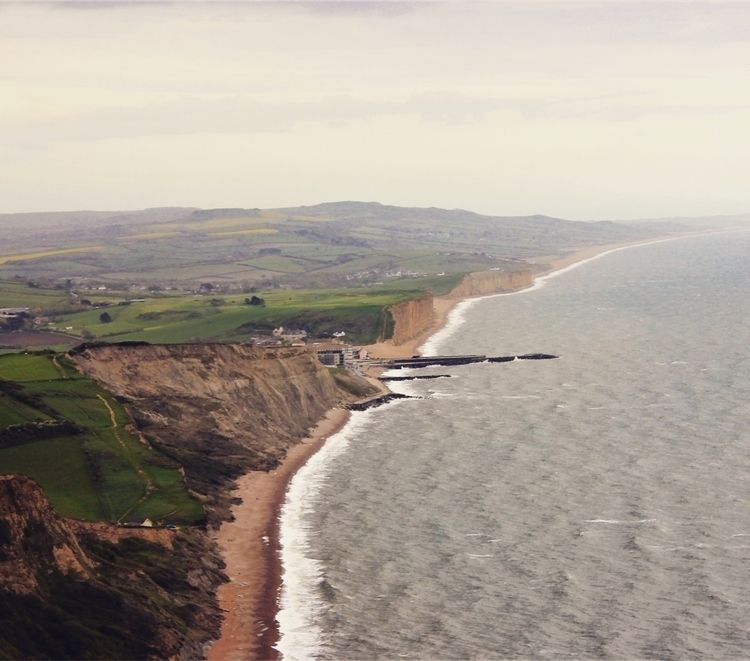 Thorncombe Beacon - westbay, hiking - samvines89 | ello
