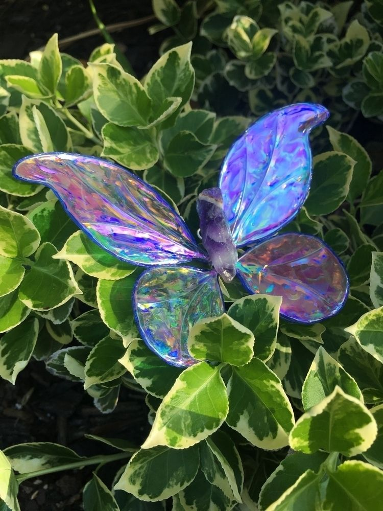pretties home today! dragonfly - faerieblessings | ello