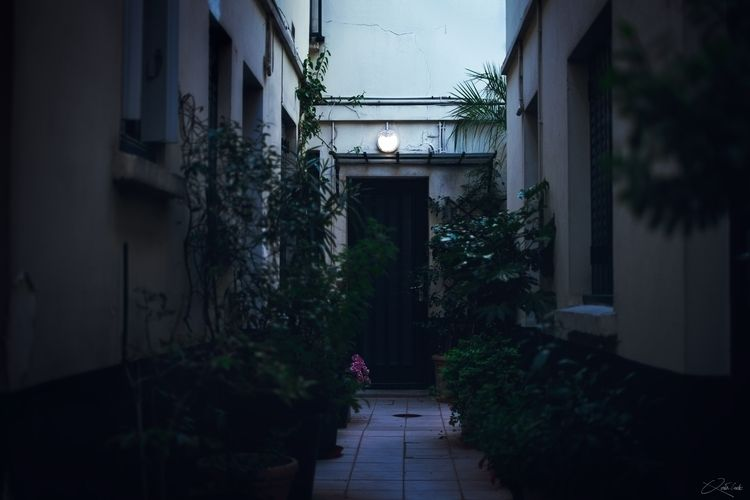 18:22 - alley, plants, blur, door - qtnc | ello
