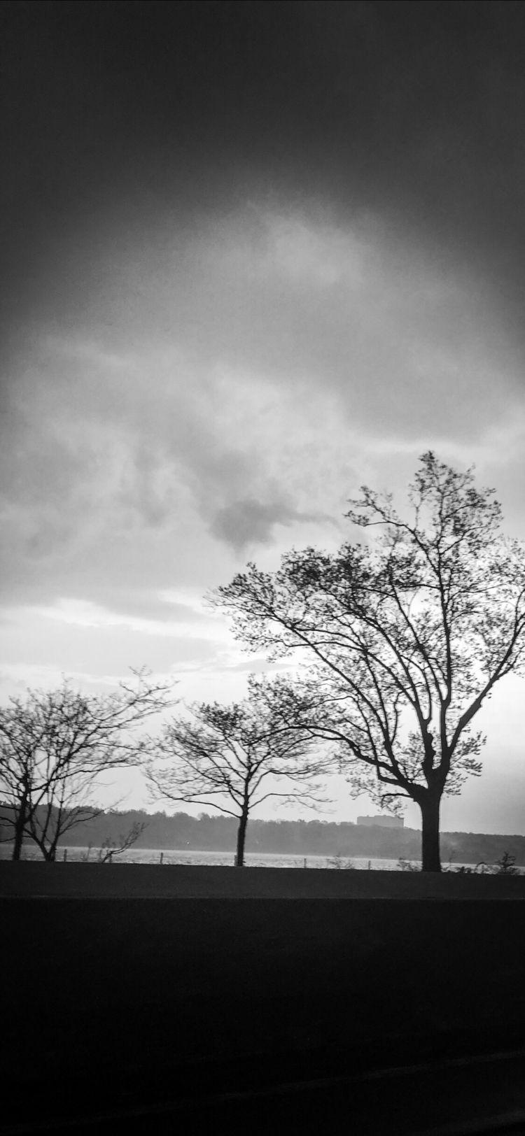 Gray, photography, black, white - boymbe | ello