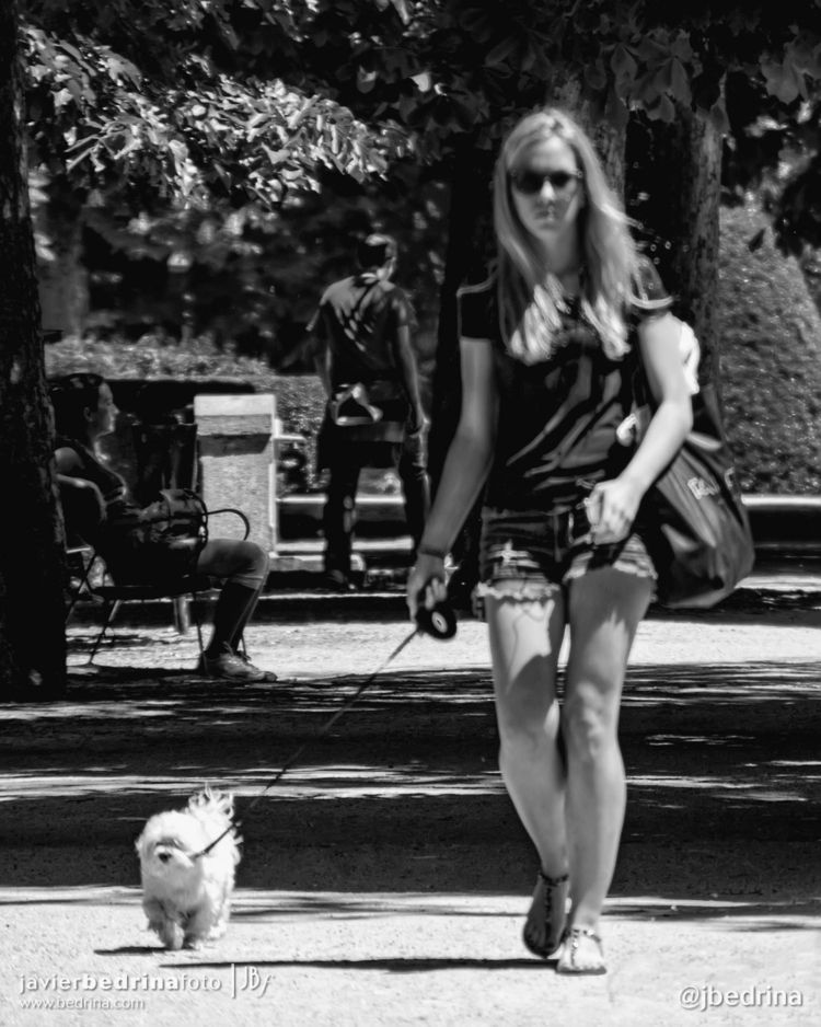 Paseando al perrito por el parq - jbedrina | ello