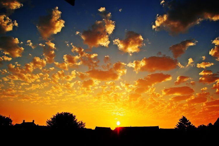 dawn day, gold stay - cloudysunrise - esfir | ello
