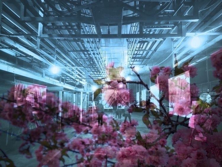 Tamashī Sakura Series 1 - 6 - industrial - jamesanok | ello
