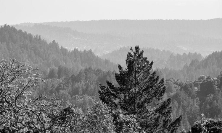 Santa Cruz Mountains | Summit H - photobiram | ello