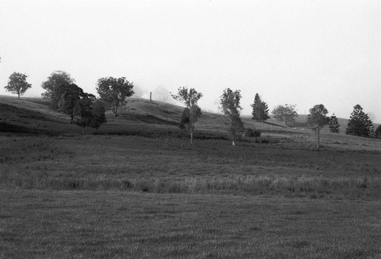 Foothills Fog Tyalgum Hills ben - baxtus | ello