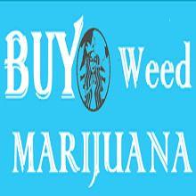 Buy Weed Online | Marijuana - B - buyweedmarijuanas | ello