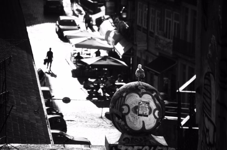 streets, photography, blackwhite - ydoron1   ello