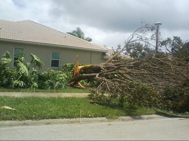 Hurricane Irma destruction (Oak - jerdub | ello
