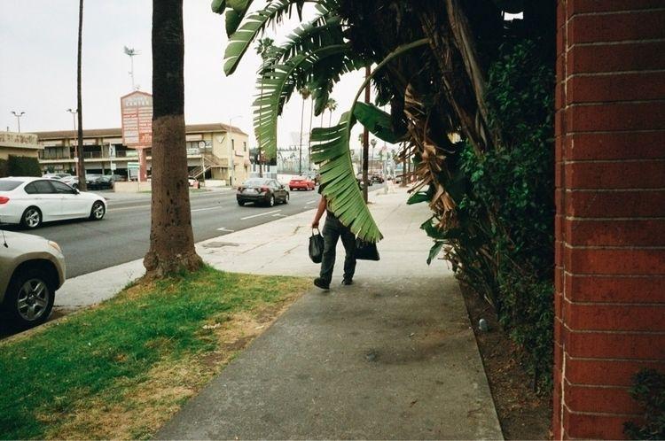 •Los Angeles, California. 2018 - milkyselects   ello