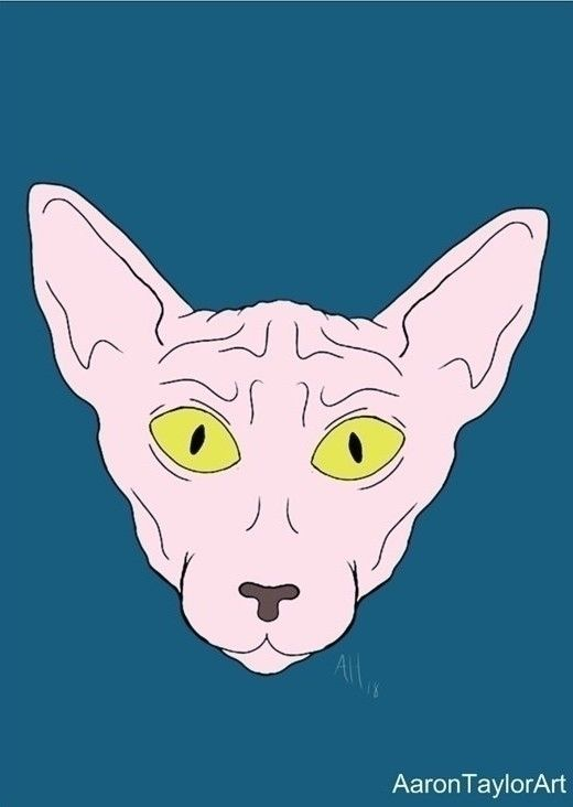 5 7 sphinx cat art print $5 - aarontaylor | ello