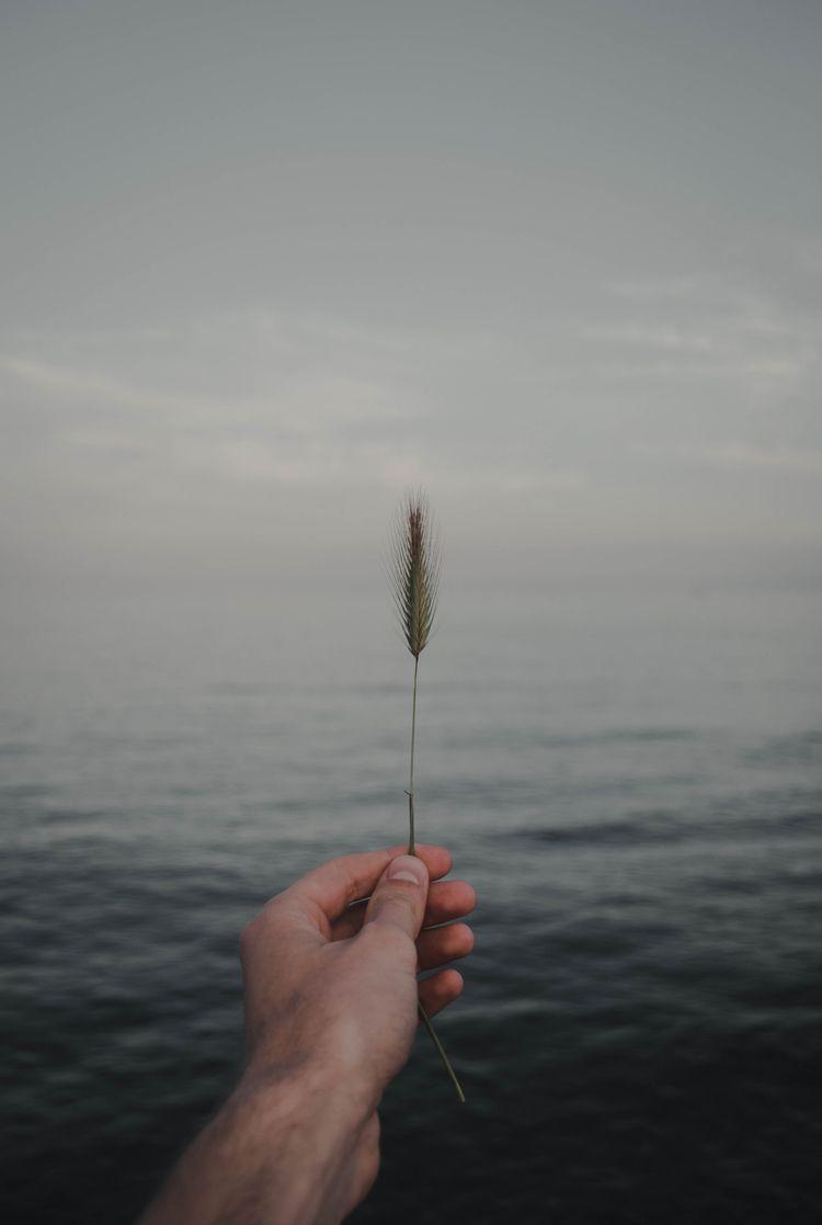 Earth Sea. · Ferran Llerena, fr - ferranllerena   ello