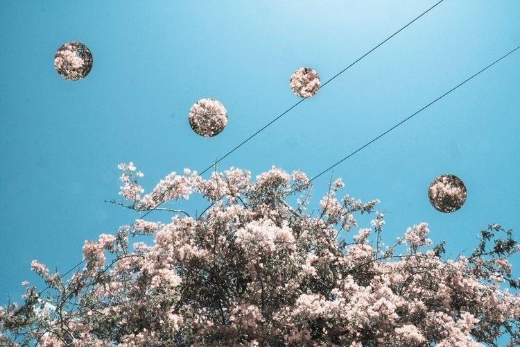 Bain de jouvence - photography, blue - msr_mood | ello